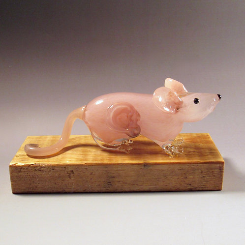 Hand Blown Glass Vacanti Mouse, with Human Ear