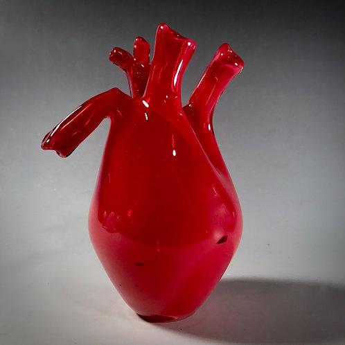Anatomical Glass Heart