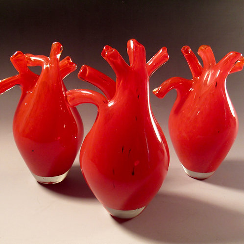 Anatomical Glass Heart