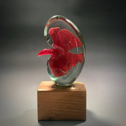 Solid Glass Kidney