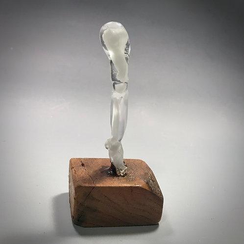Skeleton Leg
