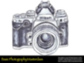 Basic Photography Training