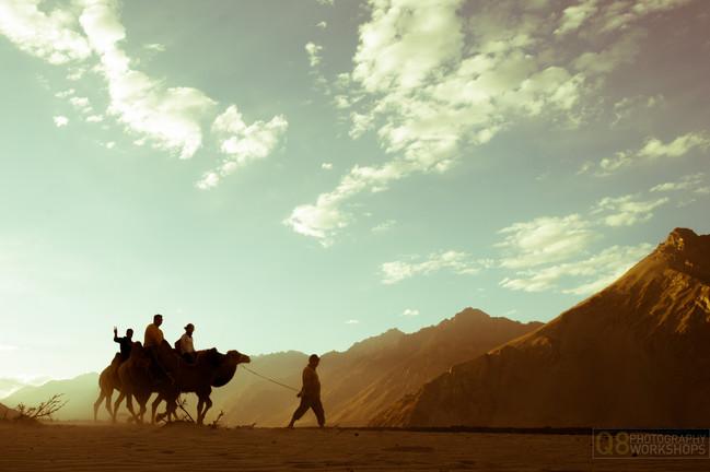 Camel Ride, Nubra Valley, Ladakh