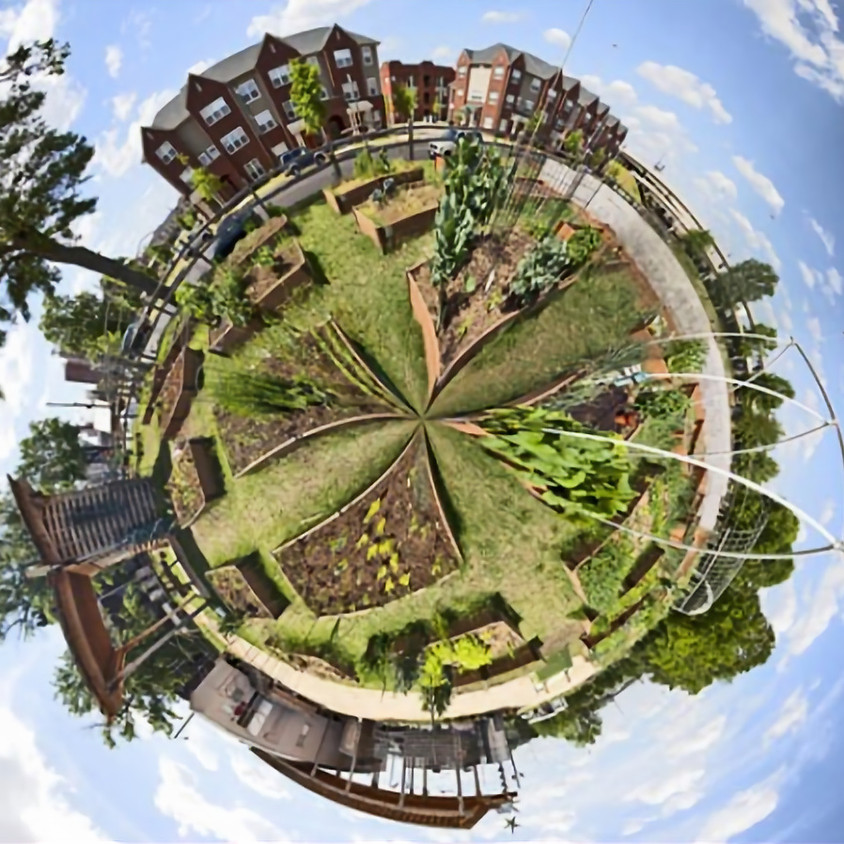 Labyrinth Lunch & Learn:  Permaculture: Turning problems into solutions