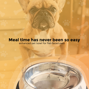 Pet Product Digital Ad