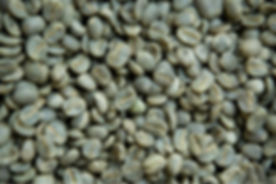 Coffee-Green-Beans-Grade-AA-Arabica-Gourmet.jpg