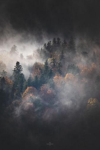 l'automne Pyrénéen