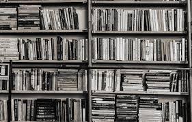Leer desde casa como nómadas (diez humildes sugerencias)