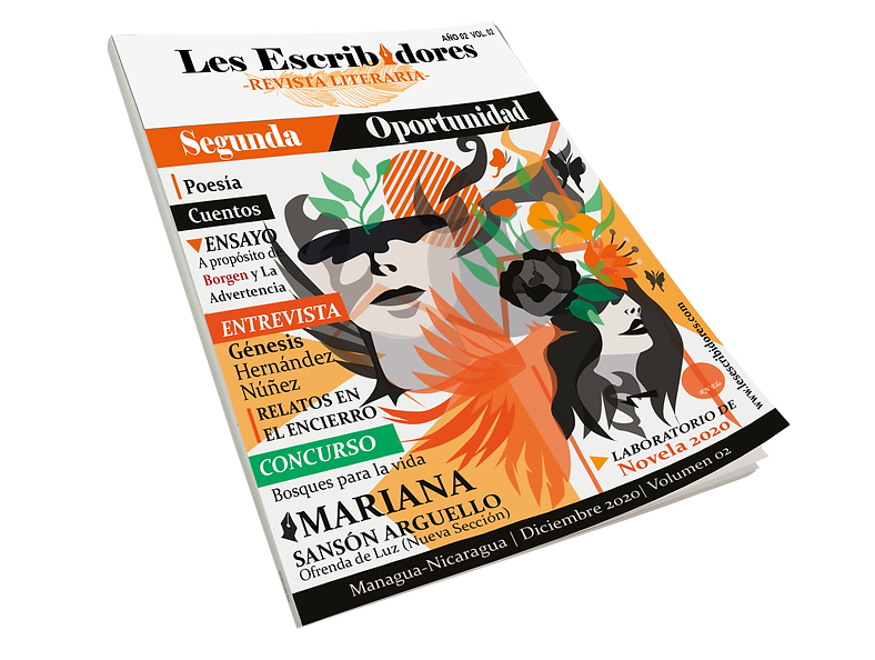 MOCK UP REVISTA VL 2.png