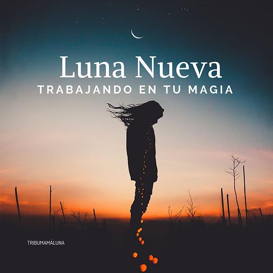 Lista de deseos de vida | Luna nueva