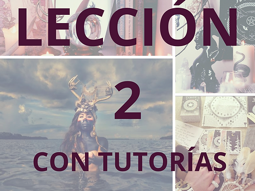 LECCIÓN 2 CON TUTORÍAS CURSO DE MAGIA NATURAL