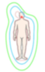 pathologie-cerebrale.jpg