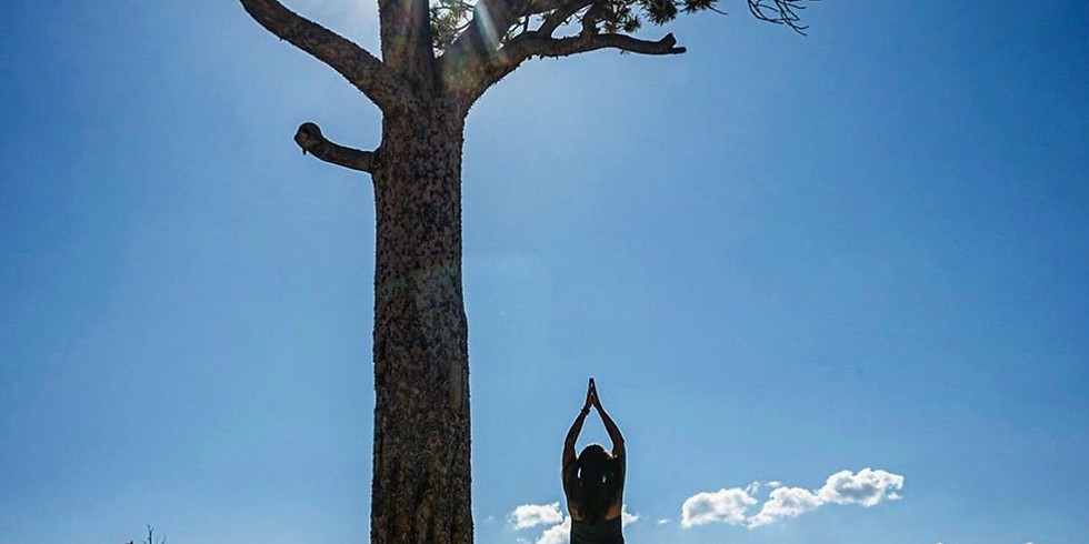 The Outdoor Adventurer's Guide to Yoga pre-order!