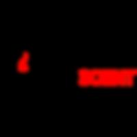 Wyndscent-Logo.png
