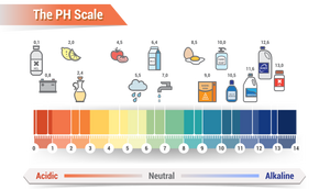 visual pH scale with common substances shown eg milk at 6.4