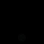 Logo IN BO.png