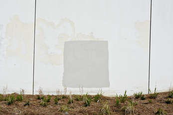 Paintings by the city of Tallahassee (in the style of Ad Reinhardt)