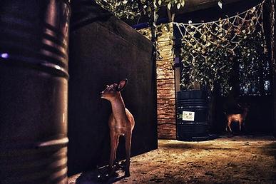 Laser Woods 森林移動迷宮 室內激光槍戰 有不同的動物:鹿!