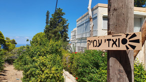 נעילת שערים בחיפה, המקרה של ואדי עמיק