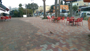 על עיצוב המרחבים הציבוריים בעיר - מרכז זיו כדוגמה
