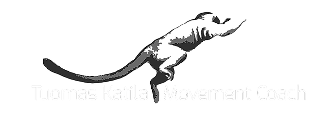 Tuomas-Katila-Movement-Coach-referenssit-verkkosivut-gobros-oy