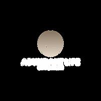 logo 2 bold - No Background.png