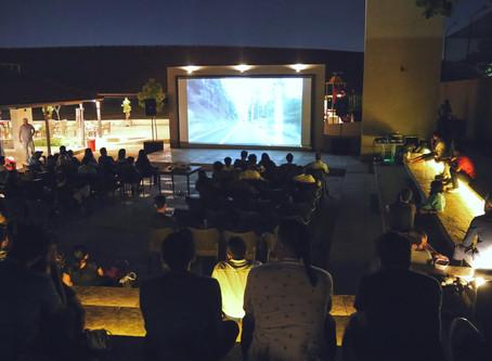 Dispatch: Moonlit Cinema - A Walk on the Wild Side