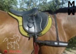 Bricole chevaux
