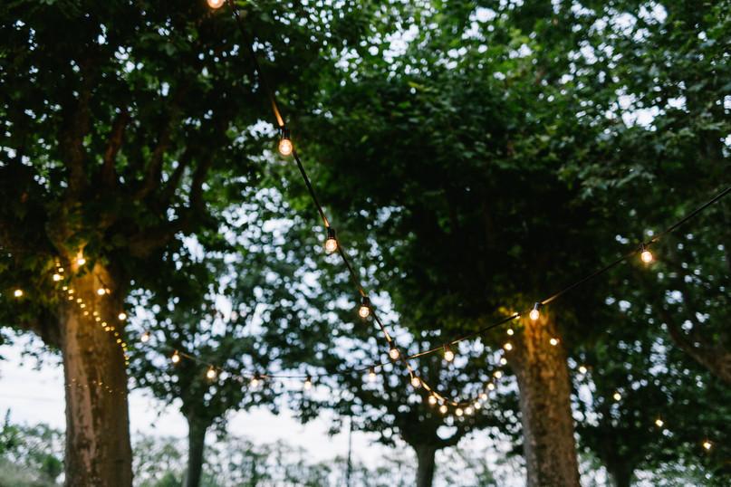 Swingyourpics 6681.jpg