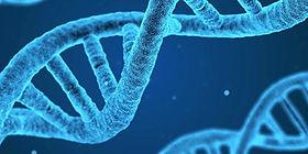 epigenetics1200a.jpg