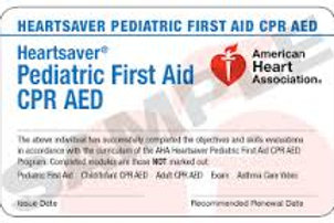 Pediatric Heartsaver First Aid CPR/AED