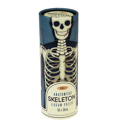 Anatomical Skeleton Puzzle