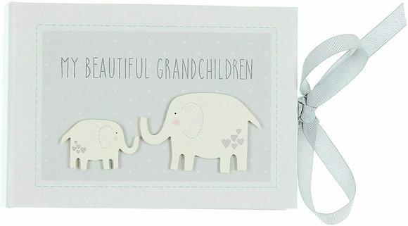 My Beautiful Grandchildren Photo Album