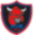 macon-rugby-logo-297x300.png