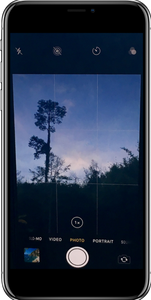 IPhone grid mode picture
