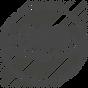 360-degree icon