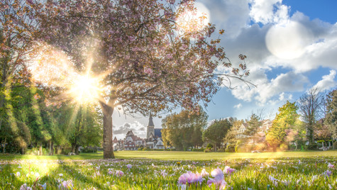Jardin d'ypres ©ishak-photography