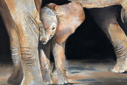 elephant_90_laurence_labat_artiste_peint