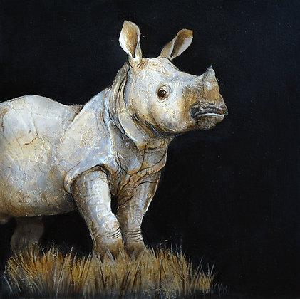 Rhinocéros n°10