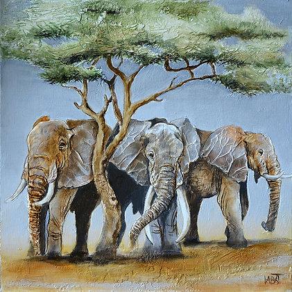 Eléphant n°97