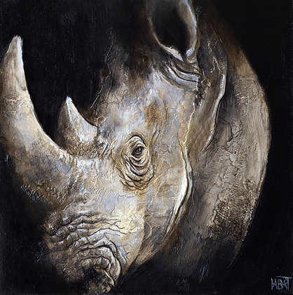 Rhinocéros n°11