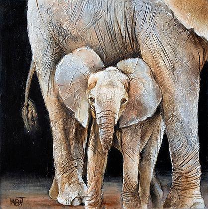 Eléphant n°101