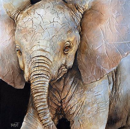 Eléphant n°102