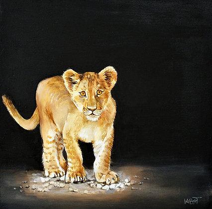 Lion n°5