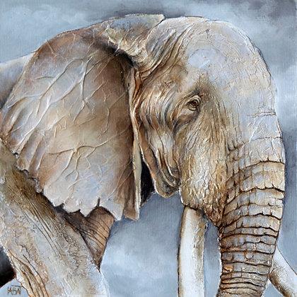 Eléphant n° 99