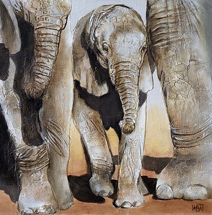 Eléphant n°98