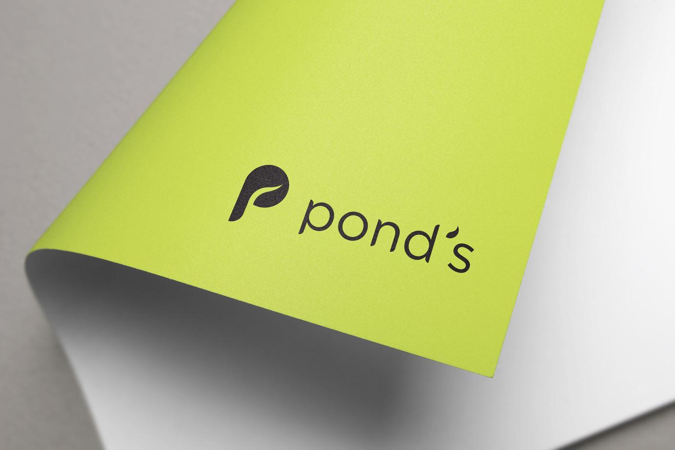Ponds5.jpg