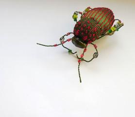 scarabée kaki et rouge