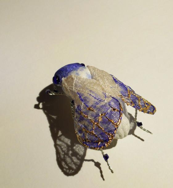 cigale série bleue