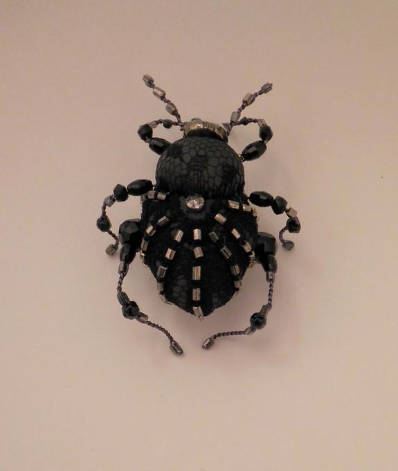 scarabé gris et dentelle noire